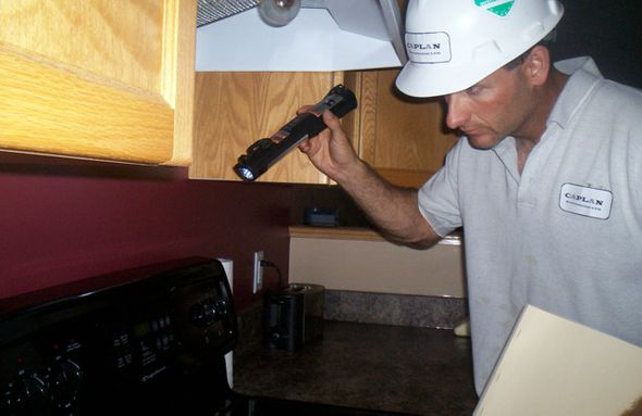 looking in kitchen for pests